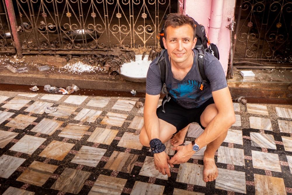 Świątynia Szczurów w Deśnok Indie