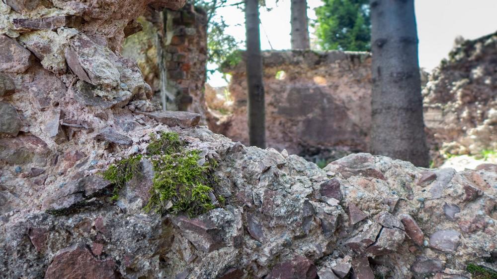 Ruiny owczarni nad pałacykiem myśliwskim Hochbergów