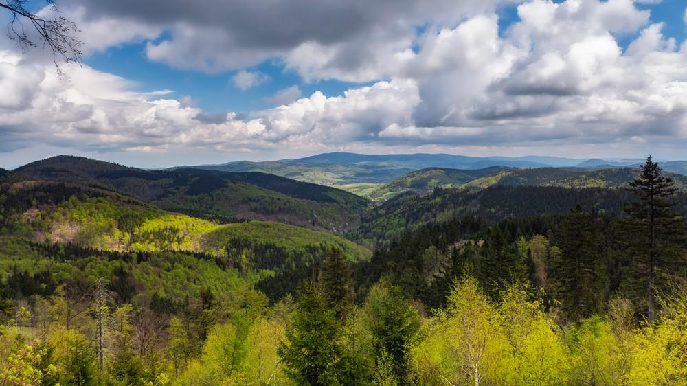 Widok znad pałacyku myśliwskiego Hochbergów w kierunku Wielkiej Sowy