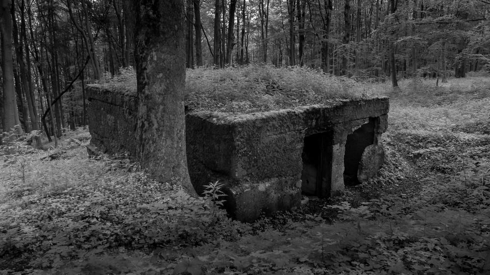 Osówka Podziemne miasto Riese Sowie