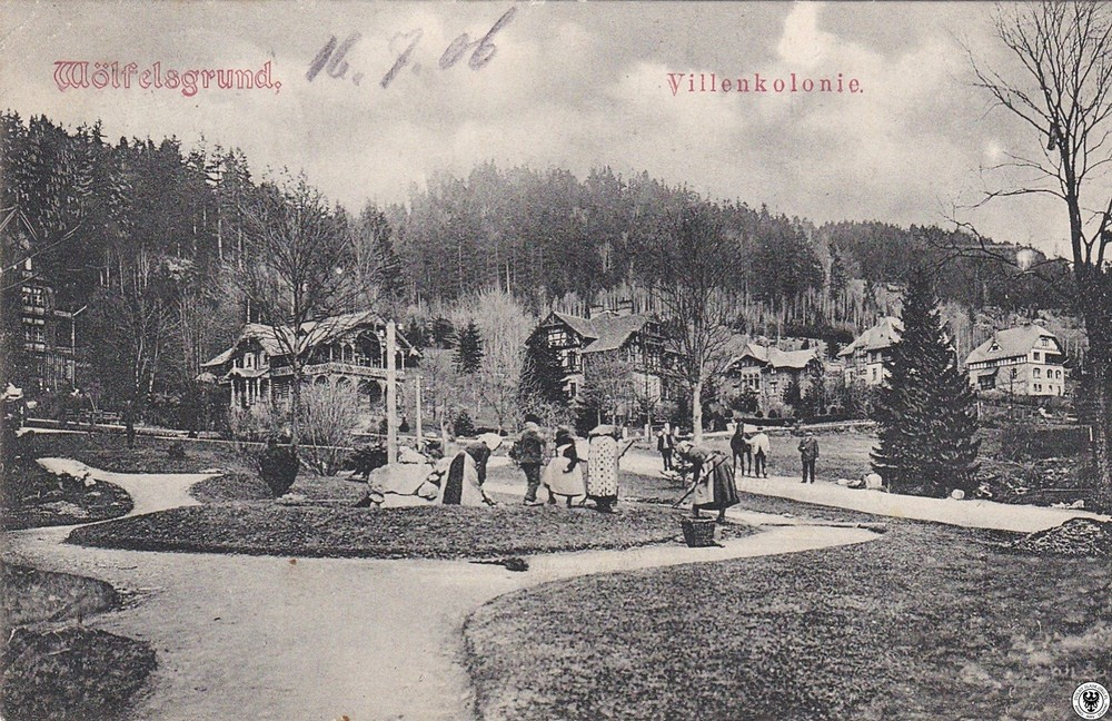 Kolonia willowa. 1900-1906