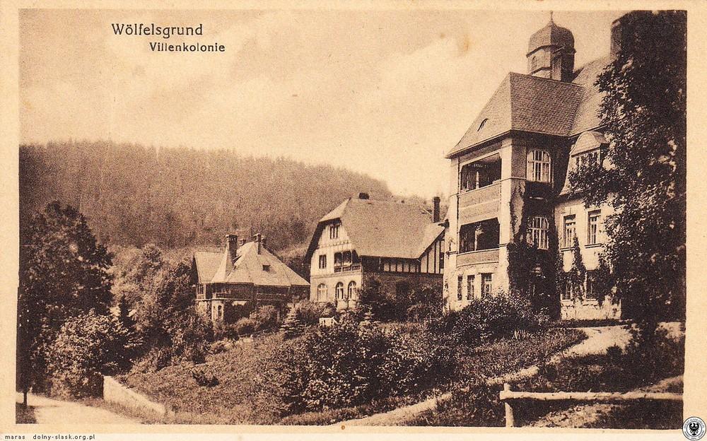 Kolonia willowa. 1915-1925