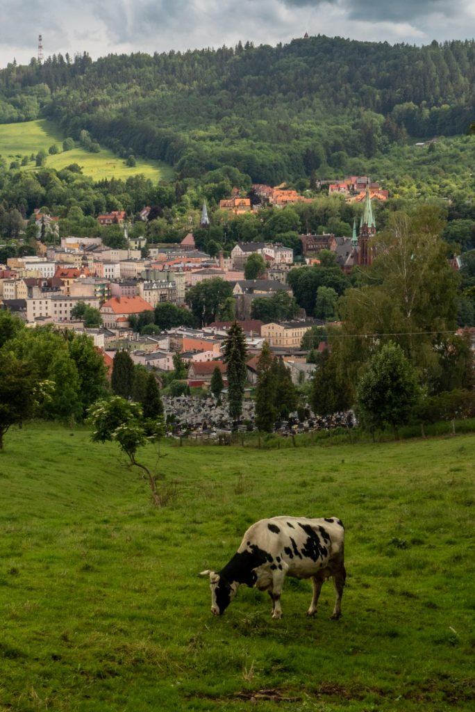 Krowa, cmentarz, Nowa Ruda, Góra Świętej Anny