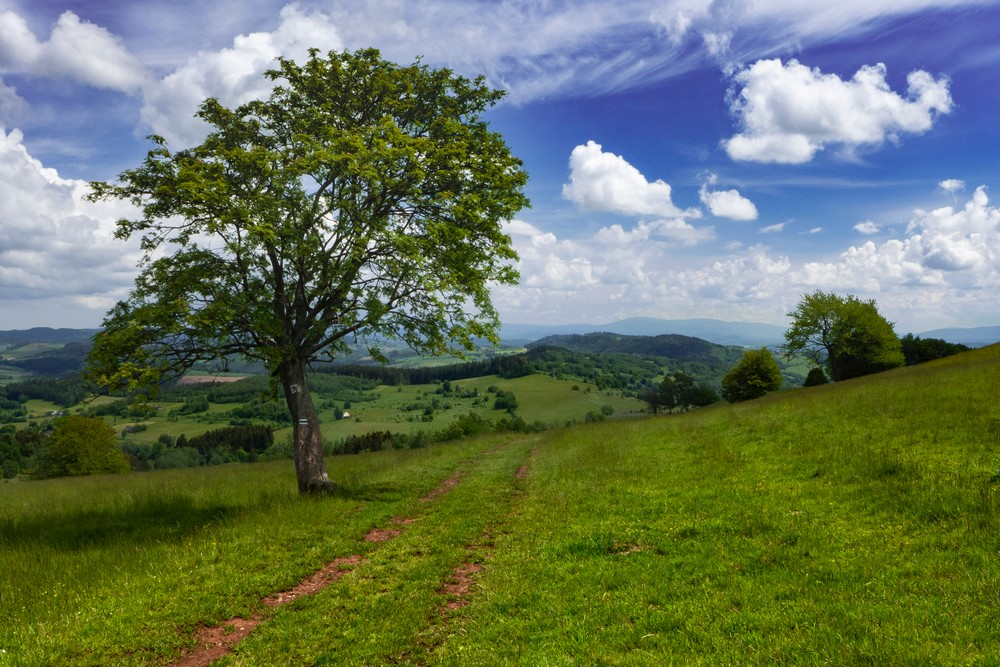 Włodzickie Wzgórza