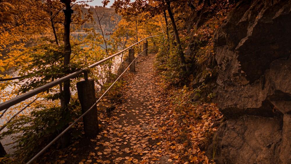 Ścieżka wokół jeziora Bystrzyckiego