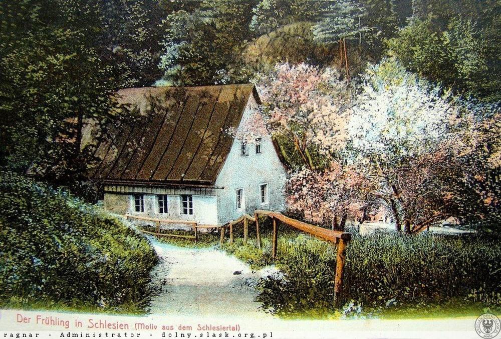 Śląska Dolina. 1900-1905