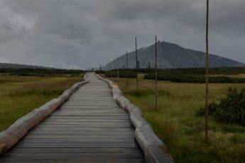 Kładki pozwalają przejść nad torfowiskiem Úpy suchą stopą nie niszcząc jego naturalnego ekosystemu