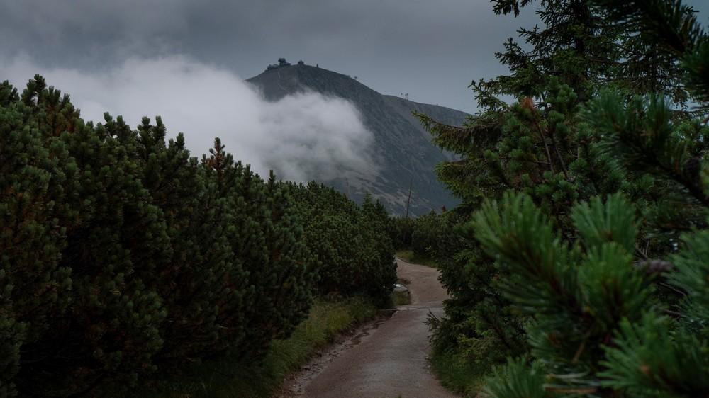 Niebieski szlak ze schroniska Luční bouda  do Domu Śląskiego, przez torfowiska Úpy