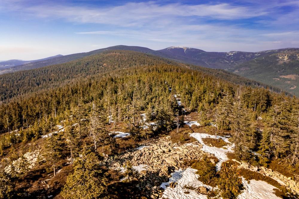 Widok z wieży w stronę Śnieżnika (w tle po prawej)